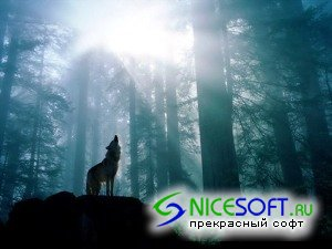 Wild Nature Wallpapers HQ - Part 1