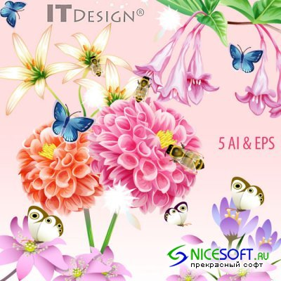 Design Flowers & Insects