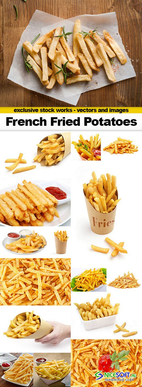 French Fried Potatoes - 16x UHQ JPEG