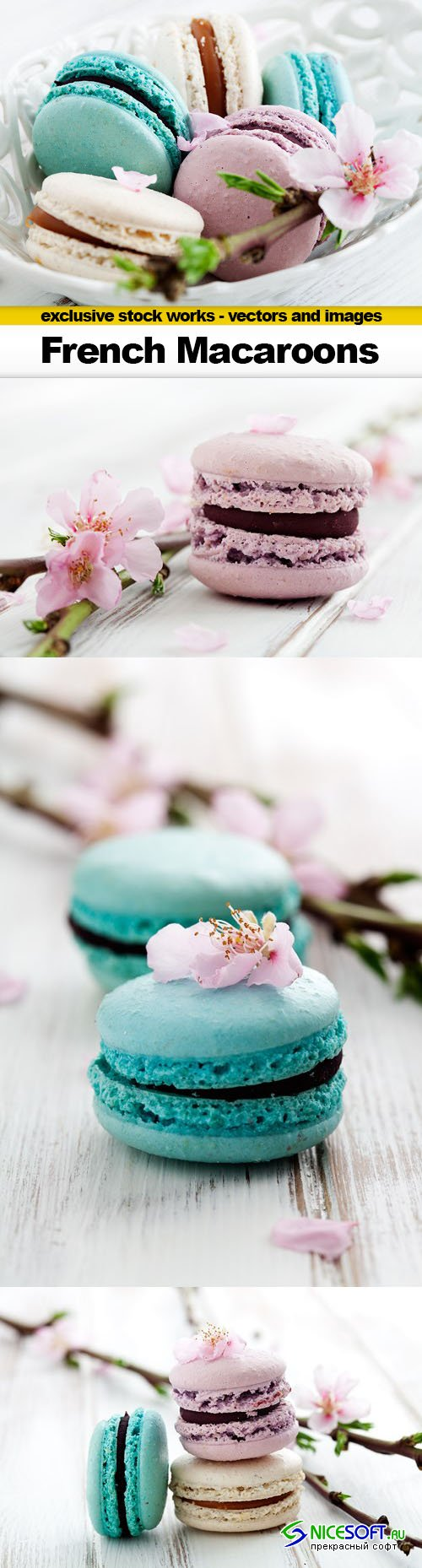 French Macaroons in Pink, Turquoise and White - 4x UHQ JPEG