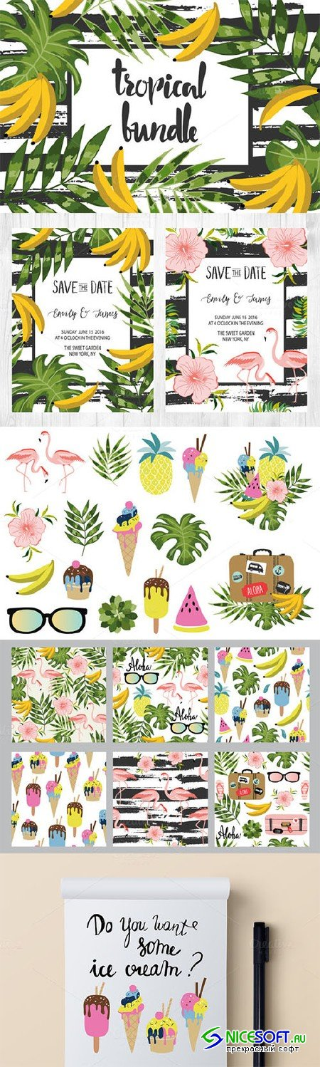 Amazing Tropical Bundle for decor - Creativemarket 315452
