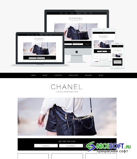 Chanel v1.0 - Wordpress Theme - Creativemarket 366057