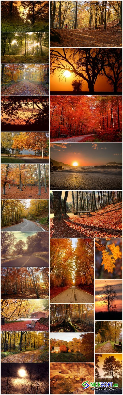 Beautiful autumn forest and landscape - 25xUHQ JPEG Photo Stock