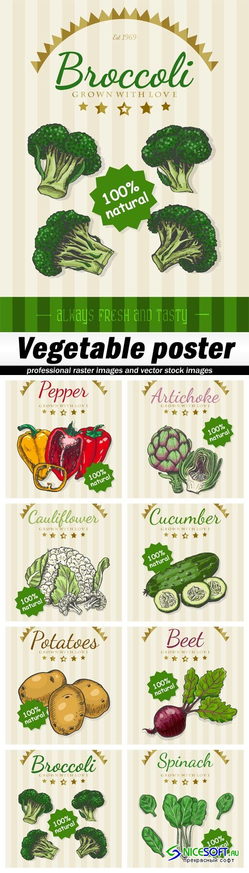 Vegetable poster - 8 EPS