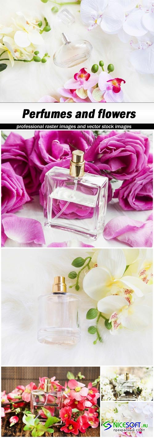 Perfumes and flowers - 5 UHQ JPEG