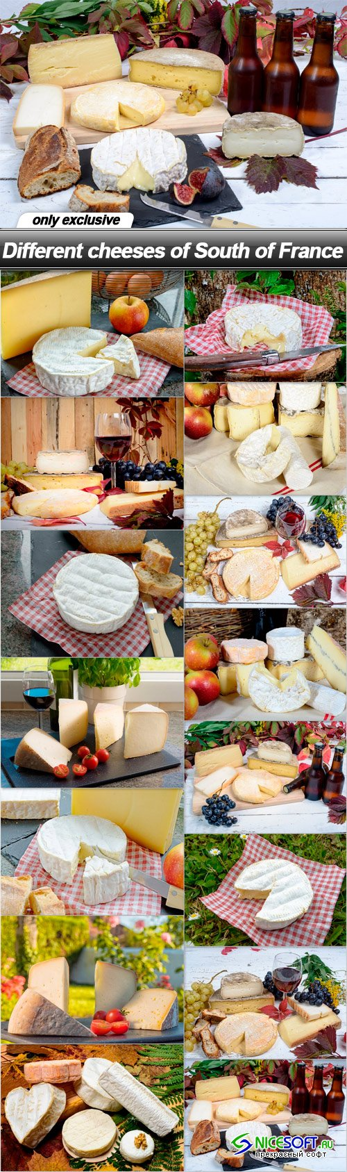 Different cheeses of South of France