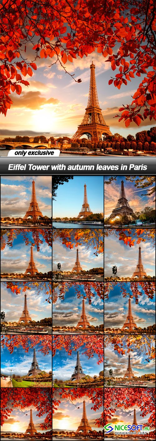 Eiffel Tower with autumn leaves in Paris