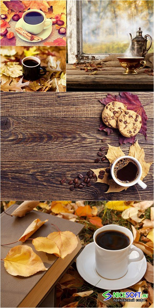 A cup of coffee on the autumn background - 5 UHQ JPEG