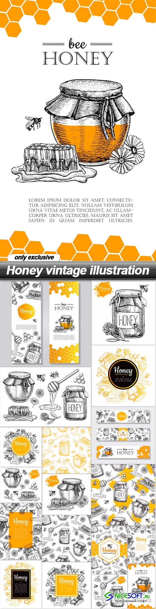Honey vintage illustration