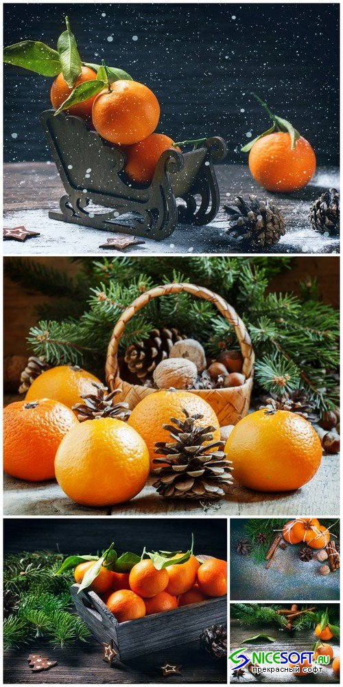 Christmas composition with tangerines - 5 UHQ JPEG