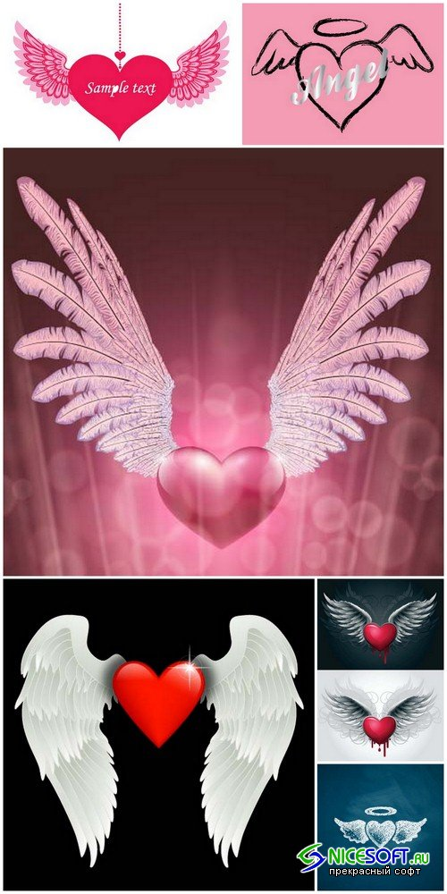 Heart with wings - 6 EPS