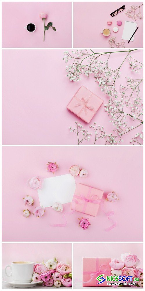 Pink background with flowers 1 - 6 UHQ JPEG