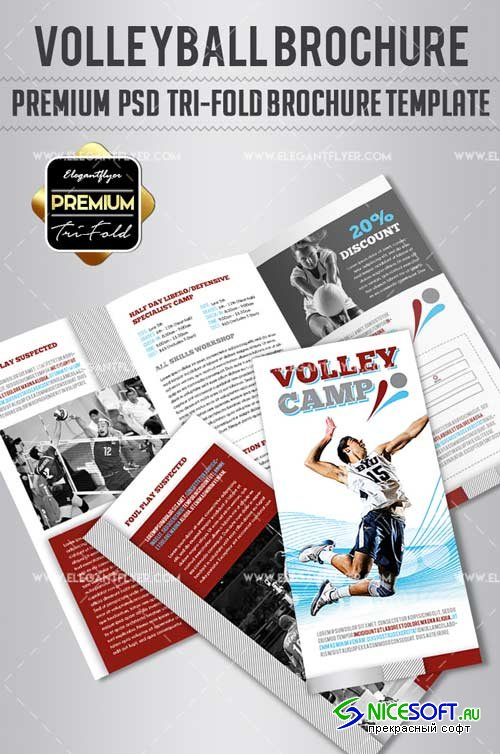 Volleyball Camp V1 2018 Tri-Fold Brochure PSD Template