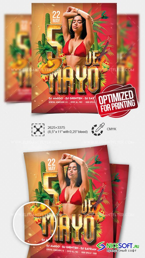 Cinco de Mayo Party V17 2019 Flyer PSD Template